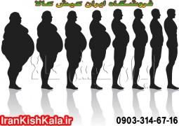 ارتباط چاقی و چربی شکم و ران ها با این سرطان