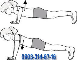 ورزش سینه